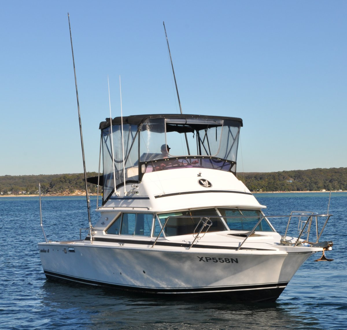 Bertram 28 Flybridge